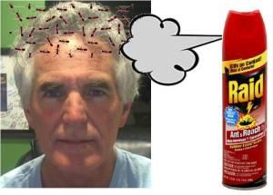 Spray ants